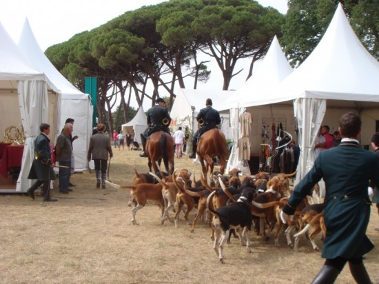 hunting and fishing exhibition in Château de Degrés